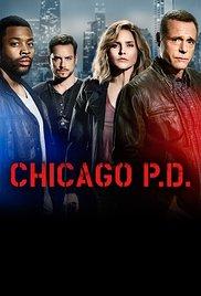 Chicaška policija